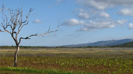 north_queensland50.jpg